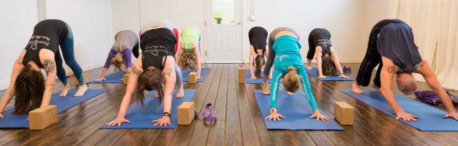 146dc19d2b5f Support Archives - Poser Yoga Studio